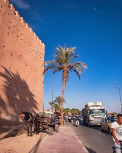 Typical Marrakesh